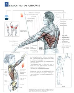 Back : Straight-arm lat pulldowns