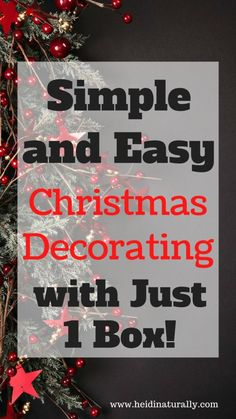 Find out how to decorate your home for Christmas with 1 box of decorations and make it look like you spent hours working. All Things Christmas, Simple Christmas, Christmas Home, Christmas Holidays, Christmas Crafts, Christmas Budget, Christmas Ideas, Merry Christmas, Holiday Crafts For Kids