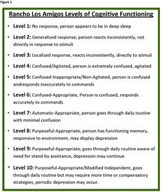 ranchos los amigos scale | Rancho Los Amigos Levels of Cognitive Functioning Scale