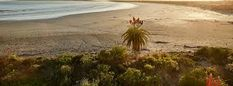 Image result for zula house paternoster