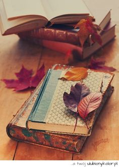 At Pretty Page Turner our favorite cover models are books. We can't get enough beautiful book photography of old books and their vintage bookshelf. Old Books, Vintage Books, Antique Books, Book Nooks, I Love Books, Coffee And Books, Book Photography, Belle Photo, Autumn Leaves