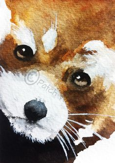 A personal favourite from my Etsy shop https://www.etsy.com/uk/listing/215594840/red-panda-art-print-bear