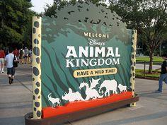 Image result for animal kingdom sign Photo Booth Design, Animal Kingdom, Signage, Cinema, Poster, Animals, Decor, Movies, Animales