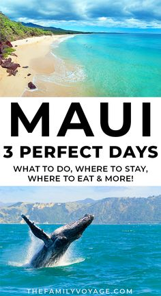 Planning a quick trip to Hawaii? Get the perfect Maui itinerary for 3 days! Even if you're planning 5 days in Maui or longer, you can use this to plan your days off the beach to make the most of your time. #Maui #Hawaii | Maui Hawaii things to do in | Hawaii travel | where to stay in Maui | what to do in Maui Hawaii Travel Guide, Maui Travel, Travel Destinations, Travel Tips, Trip To Maui, Hawaii Vacation, Vacation Places, Hawaii Life, Maui Hawaii
