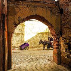 """L'arrivée #Marrakech @elfennmarrakech"""