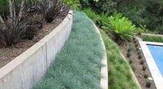 terrace design landscape contemporary with concrete wall contemporary trellises - Modern