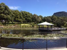 Wollongong Botanic Gardens 2013. Great place for a picnic.