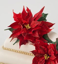 Poinsettia Cake Tutorial | SatinIce.com by Bobbi Noto of 5th Avenue Cake Designs.