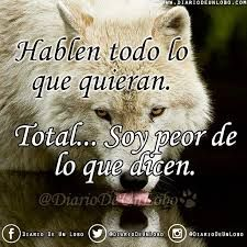 Resultado de imagen para lobo frases Wild Wolf, Sweet Words, Diversity, Angeles, Fox, Best Quotes, Thoughts, Coyotes, Style