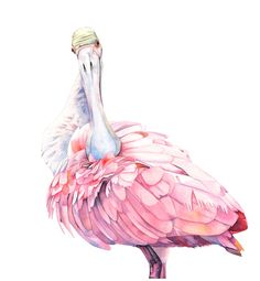 pink par Matylda sur Etsy