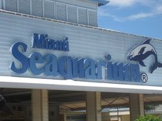 Miami Seaquarium, Miami: See 2,869 reviews, articles, and 1,332 photos of Miami Seaquarium, ranked No.24 on TripAdvisor among 584 attractions in Miami.