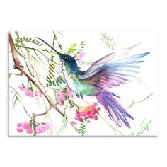 "Americanflat Hummingbird 15 by Suren Nersisyan Painting Print on Gallery Wrapped Canvas Size: 18"" H x 24"" W, Frame Color: No Frame, Format: Poster"