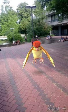 Museum Ostasiatische Kunst #PokémonGo