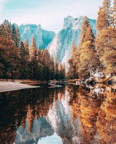 amazing, autumn, beautiful, brown, cool