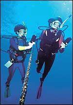 How To Scuba Dive | Scuba Diving Training & Certification | Scuba Diving