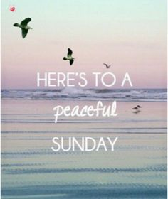 Sunday Morning Quotes, Sunday Quotes Funny, Happy Quotes, Funny Quotes, Hard Relationship Quotes, Career Quotes, Success Quotes, Robert Kiyosaki, Tony Robbins