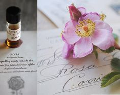 Rosa is an earthy, warm, woodsy rose botanical perfume that develops into a rich rosy bouquet over time featuring precious Oud in the base. The floral fragrance literally blossoms on the skin of the wearer. Completely botanical, a true vital nature perfume. Handmade item Materials: 190 Proof Organic grape alcohol; vital plant essences including rose, frankincense, Mysore sandalwood, oud, spice and citrus;and our own artisanal tinctures. There are over forty individual, pure essences in this…