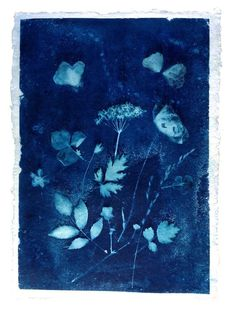 DIY: cyanotype prints - tips & trucs - Print en dessin Botanical Illustration, Botanical Art, Illustration Art, Line Art Flowers, Flower Art, Textile Prints, Textile Art, Sun Prints, Alternative Photography