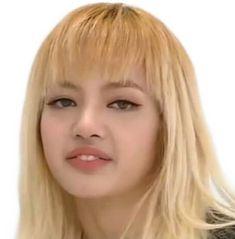 47 Ideas memes kpop sem legenda blackpink for 2019 Memes Blackpink, Funny Kpop Memes, Blackpink Lisa, K Pop, Seokjin, Blackpink Funny, Black Pink, Blackpink Photos, Pop Idol