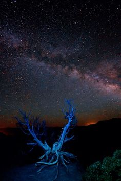 "Zion Galaxy--""The band of the Milky Way, our home galaxy ..."