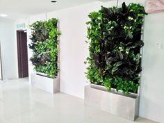 jardines verticales interiores para oficinas