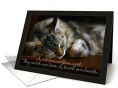 Cat card: Pet Cat Sympathy Card, Loss Of Pet Greeting Card by Moonlake Designs