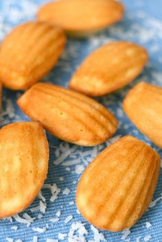 Coconut Madeleines - lovely light and airy cookies. Cookie Desserts, Just Desserts, Cookie Recipes, Dessert Recipes, Baby Biscuit Recipe, Madeleine Recipe, Kolaci I Torte, Muffins, Gula