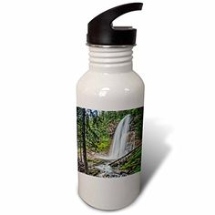 3dRose Boehm Photography Landscape - Virginia Falls in Glacier National Park - Flip Straw 21oz Water Bottle (wb_244359_2) *** Find out more about the great product at the image link.