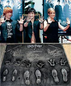 Harry Potter ...Wand prints!