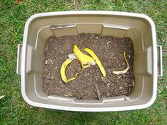 DIY compost - will be trying this out since we dont have trash pickup