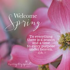Welcome Spring To everything is a season & a time. Bible Scriptures, Bible Quotes, Spring Quotes, Welcome Spring, Christian Inspiration, Word Of God, Favorite Quotes, Positive Quotes, Everything