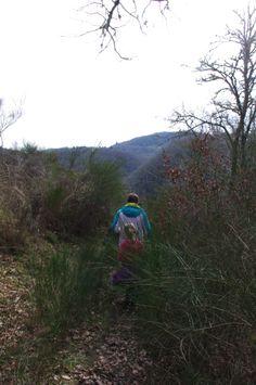 Sentier d'accès à un autre panorama sur la Dordogne