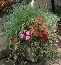 Looking for some inspiration for your fall container gardens... Check out this article by Kim Gamel of Contained Beauty!  It's always fun to see what combinations Kim has on her cart! | Container Garden Basics: Mix Textures to Catch the Eye