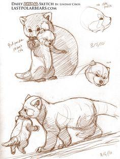 Red Panda Tutorial