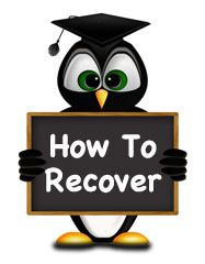 How to Recover From the Effects of Penguin Update