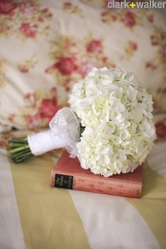 This IS what my bridesmaids will have! White hydrangea...no greenery...small...only difference is our ribbons will be grey.