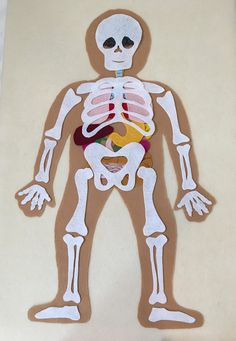My Body, Make this Educational Felt Set with Bones and Organs, Montessori Inspired Educational Scien Anatomy Bones, Human Anatomy, Science Toys, Science Fair, Human Body Activities, Activities For Kids, The Zoo, Fabric Markers, Fair Projects