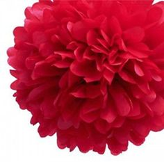 Aimeart Party Tissue Pom Poms 6 Pcs 10inch Diameter Paper Flower Ball Hanging Decorations Red -- Want to know more, click on the image.Note:It is affiliate link to Amazon.
