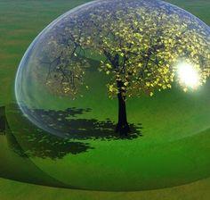 imagenes medio ambiente - Buscar con Google
