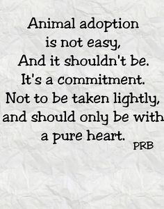 Animal adoption is a lifetime choice. Be prepared to make a commitment to that animal for the duration of his/her life.