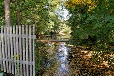 Wilde Briese: Wanderung durch das Briesetal Wilde, Trunks, Plants, Blog, Swan Lake, Loneliness, Communities Unit, Recovery, Drift Wood