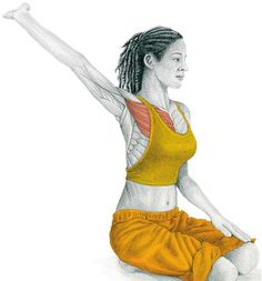 In our previous article The Art of Stretching we presented 36 illustrations in color with stretches for specific muscles. We now continue with more illustrations