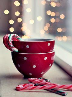 2 sweet cups of joy!!    By Gabriela Da Costa on Flickr    www.photoideashop.com