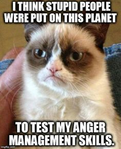 I think stupid people were put on this planet to test my anger management skills