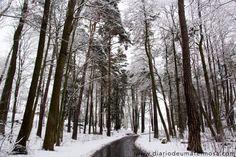 O inverno na Suécia.