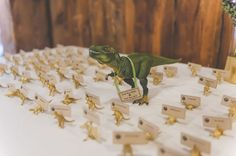 Robot & Dinosaur Wedding on a Farm
