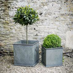 This set of two Tetbury planters from Garden Trading have been inspired by the weighty antique lead versions. Crafted from galvanised steel, they each feature a smart olive finish and their simple square shape is complemented by classic bull nose handles and riveted detailing.