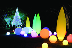 We probably won't have snow on the ground, but the entire city will be aglow at these 18 holiday lights events, featuring everything from underwater menorahs to live reindeer. Check the map to find the closest celebration to you.