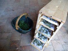 Plat Vegan, No Plastic, Zero Waste, Hygge, Conservation, Ladder Decor, Tea Time, Eco Friendly, Oui