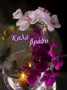 Good Night, Plants, Anastasia, Greek, Wallpapers, Ideas, Nighty Night, Wallpaper, Plant